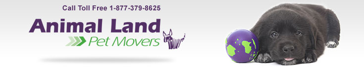 Pet Movers - Professional Pet Relocator. Animal Land specializes in coordinating pet relocation as if your pet were our own. Offices in five continents. Contact us today at 1-877-379-8625