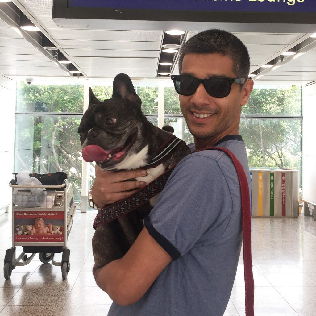 Pet Relocation to Hong Kong